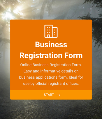 Business Registration Form