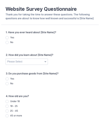 Website Questionnaire Form