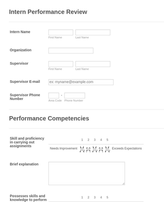 Intern Performance Evaluation Form