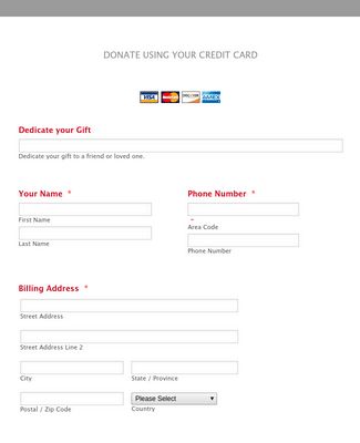Credit Card Donation Form Template Jotform