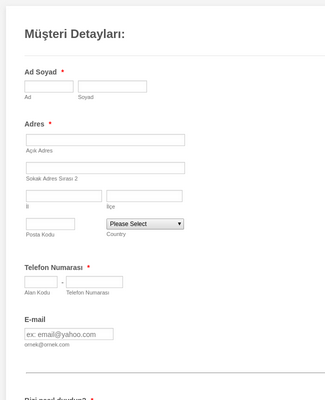Yeni Müşteri Kayıt Formu