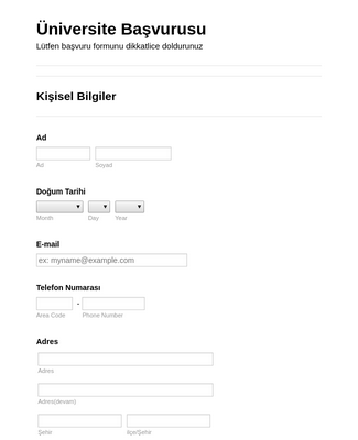 Üniversite Kayıt Formu
