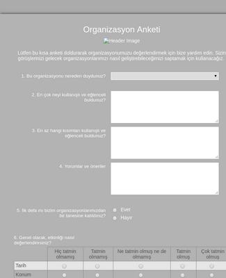 Organizasyon Anketi