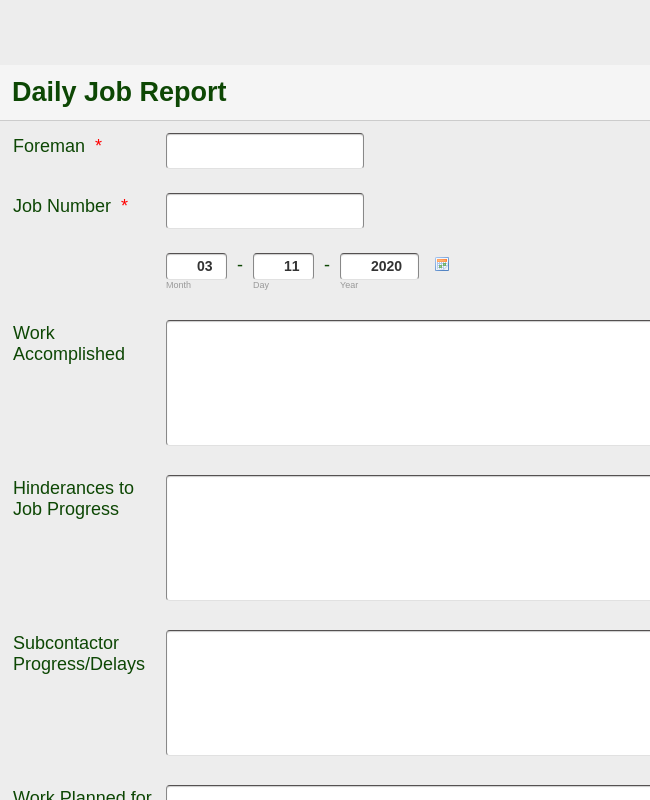 Daily Job Report FEI