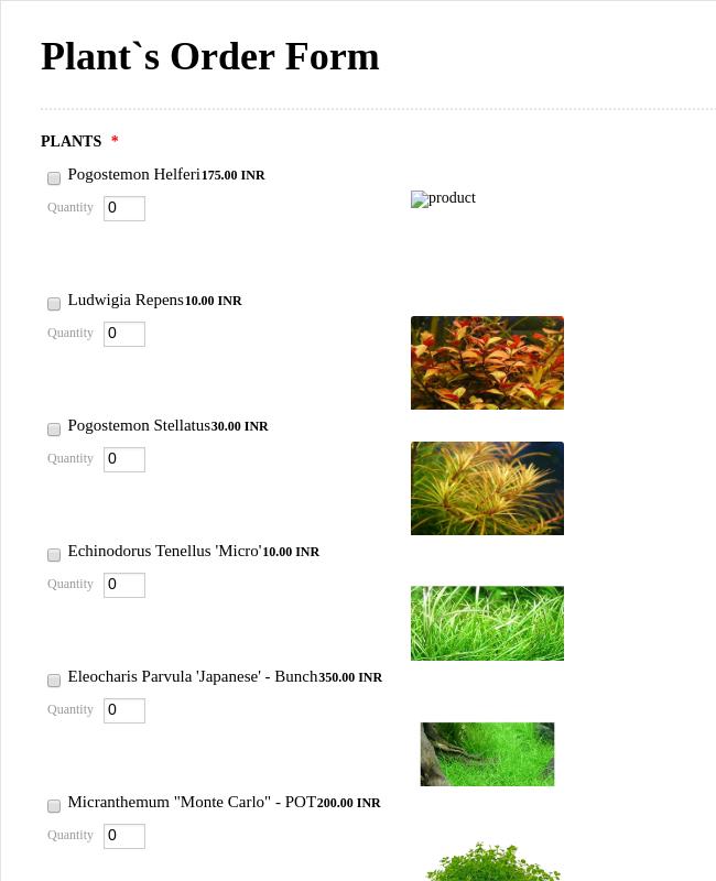 Plant S