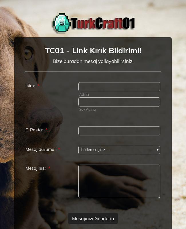 TC01 - Link Kırık Bildirimi!