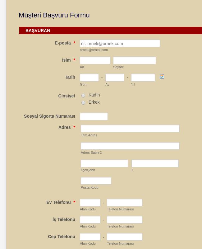 Araç Satış   Müşteri Başvuru Formu