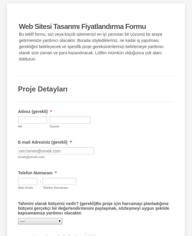 Web Sitesi Tasarımı Sipariş Formu