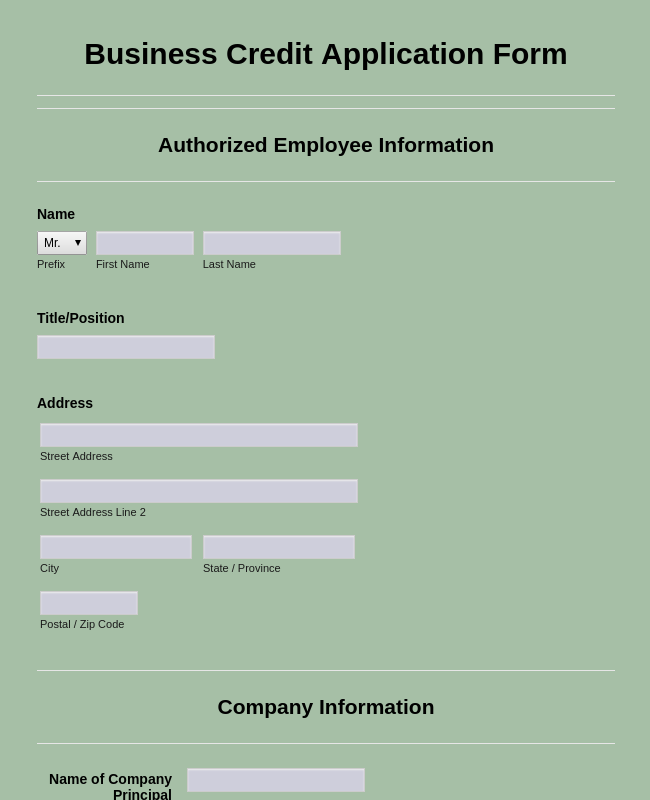 Business Credit Application Form