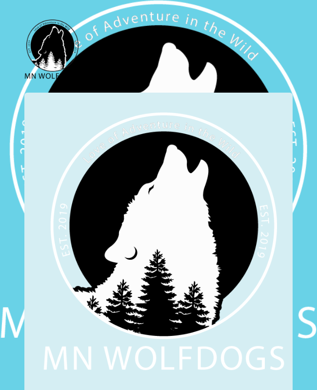 Wolfdog Adoption Application Form