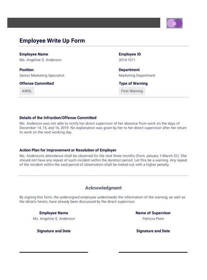 Employment Write Up Template from cdn.jotfor.ms
