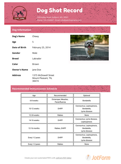 Puppy Health Record Template from cdn.jotfor.ms