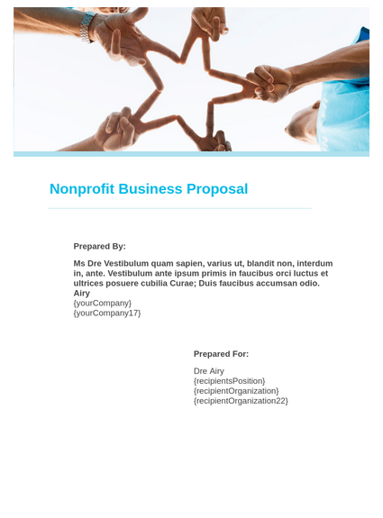 Non profit Business Proposal