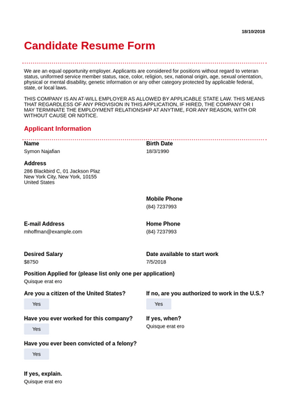 candidate resume template
