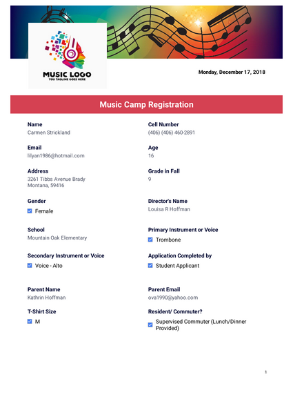 Summer Music Camp Participant Record