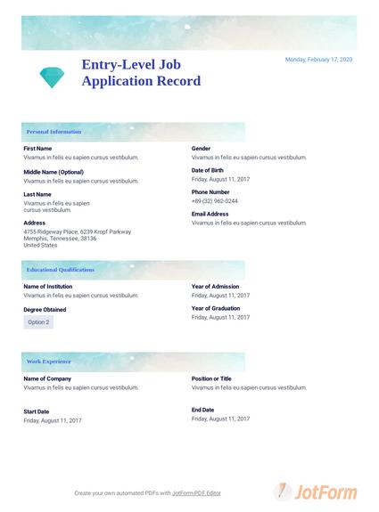 Entry-Level Job Application Record