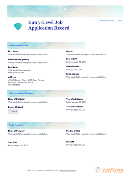 Entry-Level Job Application Record