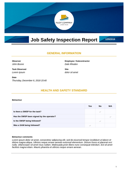 Job Safety Inspection Report