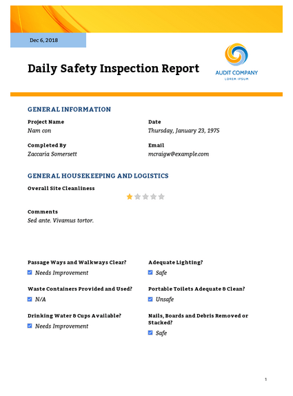 Daily Safety Inspection Report