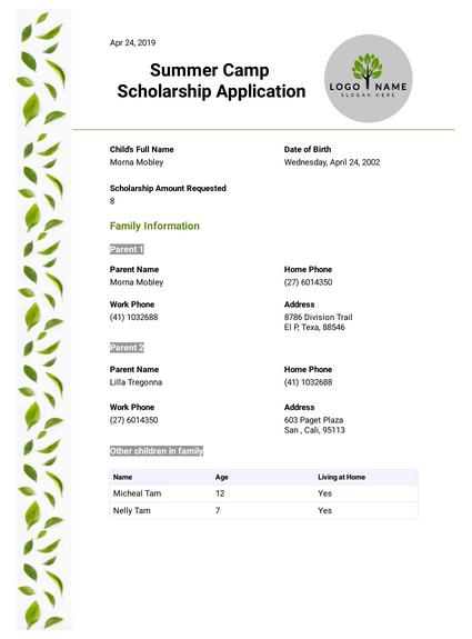 Summer Camp Scholarship Application