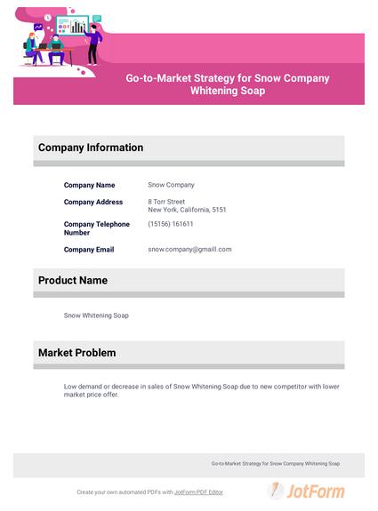 Go To Market Strategy
